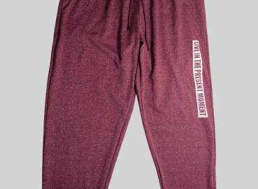 RED WINE PRINTED JOGGER Image