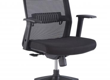 Musk Chair Image